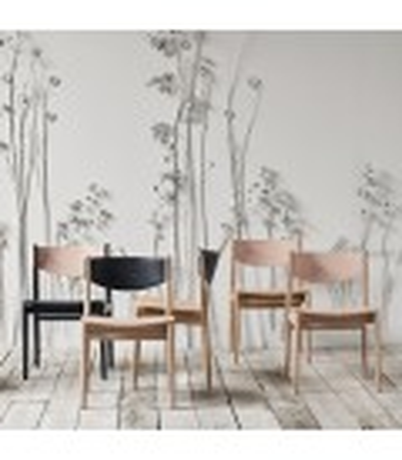 Apelle 餐椅